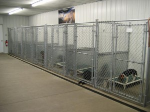 Dog Kennel II