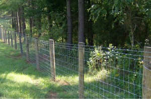 Farm Fence II