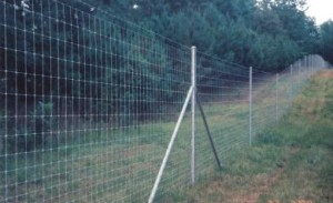 game fence